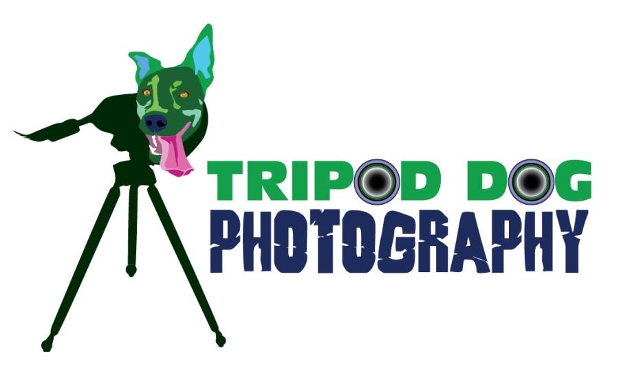 Tripod_Dog_photography_Business-Card